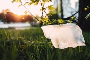 Plastic Pollution - image